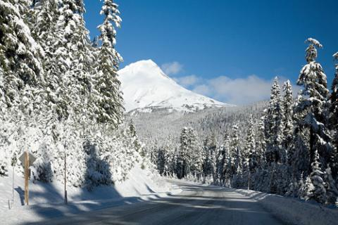 Christmas in the Cascades!